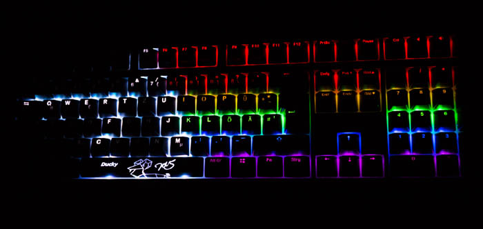 ducky shine dark side of the moon